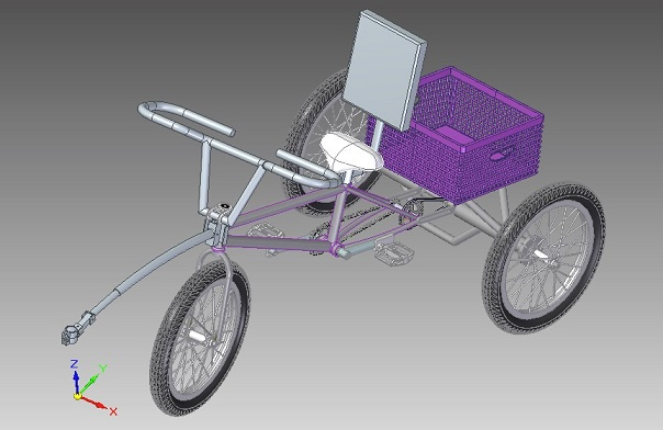 Adaptive Tricycle Design